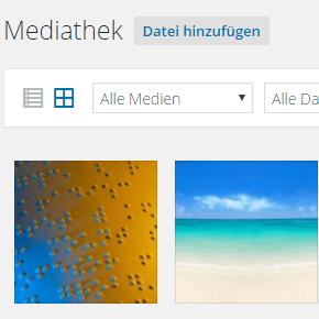 Bilder in WordPress: bearbeiten, hochladen und SEO-freundlich beschreiben